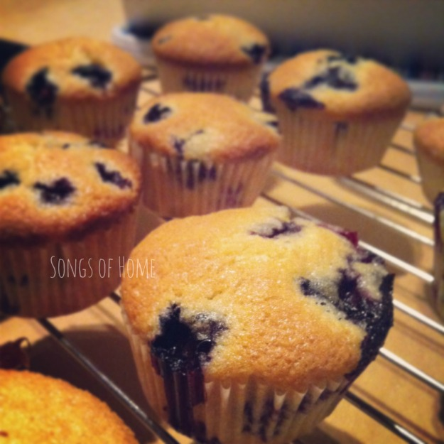 Blueberry_Muffins