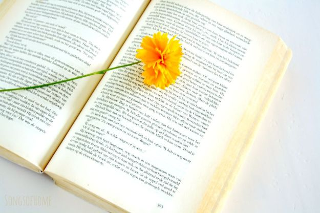 open book with flower
